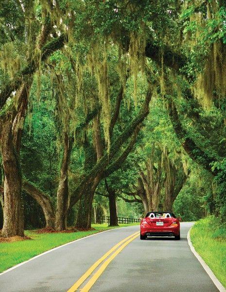 & 5 incredibly scenic Florida drives