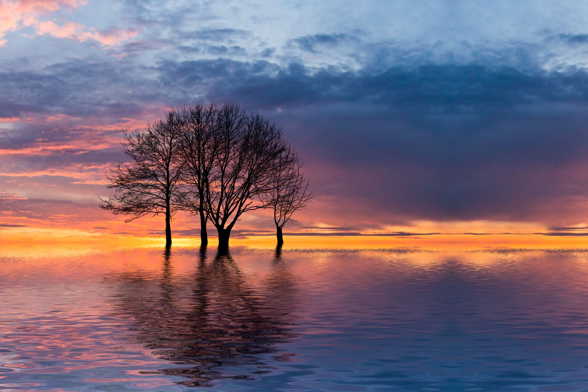 Photograph the flood by König Canon on 500px