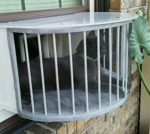 Cat Solarium Cat Window Box Cat Perch Cat Window Door Outdoor Cat Window Perch Patio Plexiglas Cat Ve Cat Window Perch Cat Window Outdoor Cats