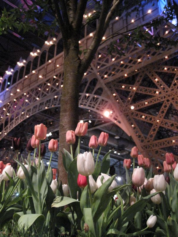 Springtime In Philadelphia Er Paris Gardening Flowers D