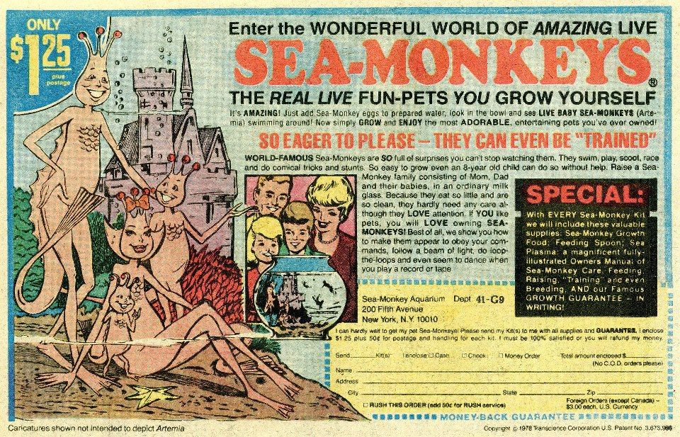 Sea Monkeys Every Child Of The Sixties Had A Sea Monkey Sea