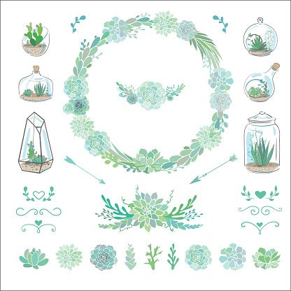多肉植物 イラスト素材 Art イラスト 多肉植物 背景 素材