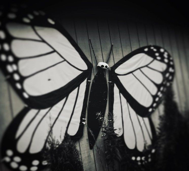 Michelle Mercurio @mercuri22 #visualsoflife #womeninphotography #inspiration #photo #photos #pic #pics #picture #photographer #pictures #snapshot #art #beautiful #photoshoot #photodaily