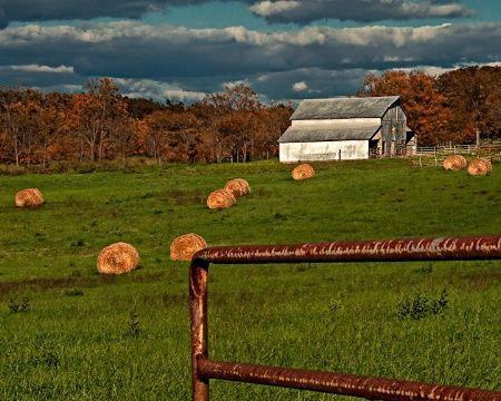 Autumn Farming