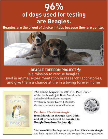 Karen J Roberts Children S Book Author Beagle Freedom Project Beagle Animal Treatment