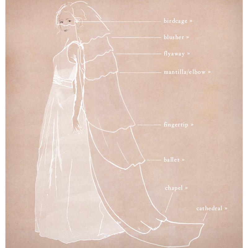 bridal veil names guide Wedding veil styles, Petite