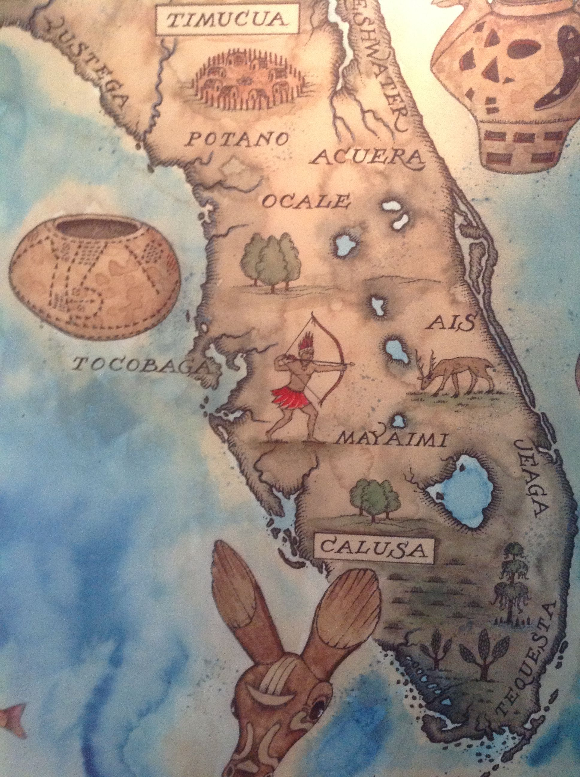 Love this map of the Florida Native