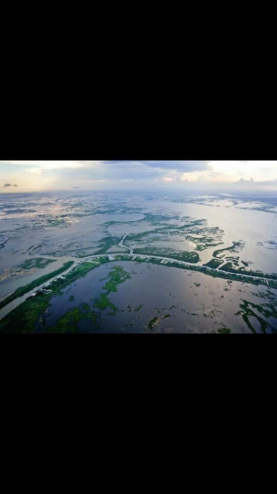 Delacroix Wetland Levee Coastal