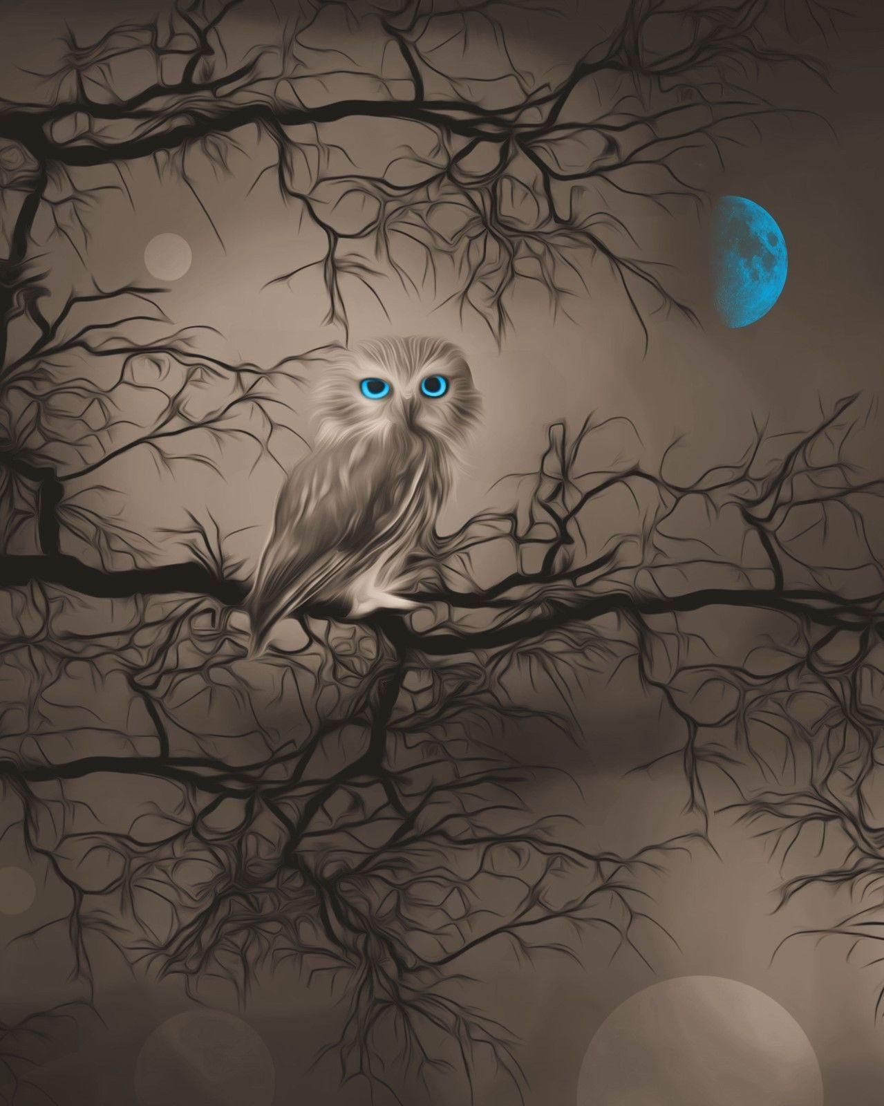 Brown blue moon owl decor modern bedroom home decor wall art matted