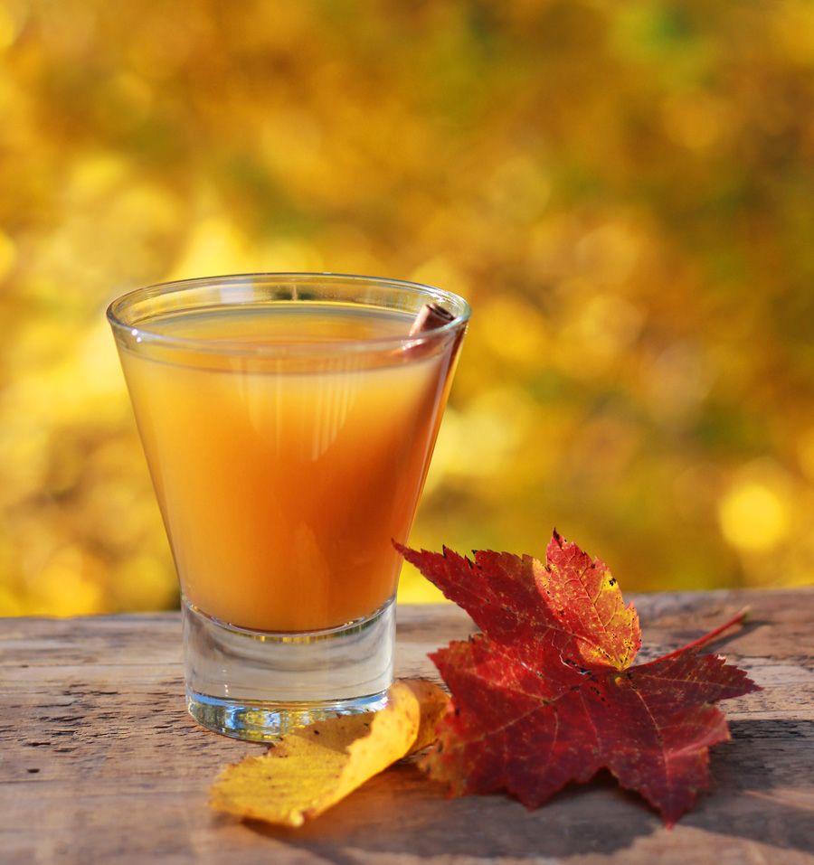Apple Cider Alcoholic Drinks: Caramel Apple Cider Cocktail Drink Recipe-- By Susan