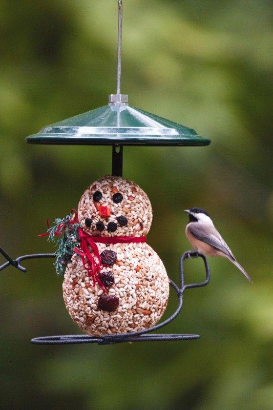 Snowman seed cylinder | Wild birds unlimited, Wild birds, Birds