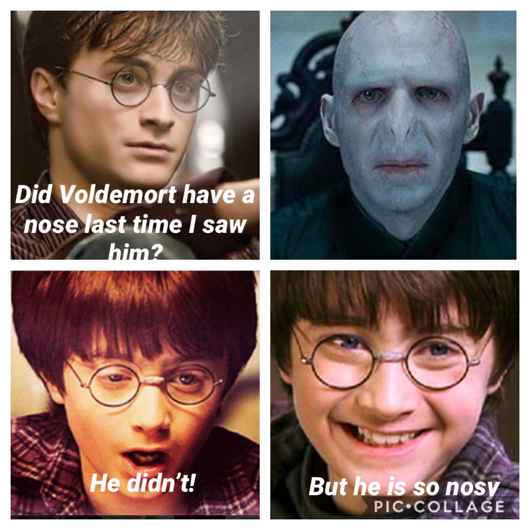Voldemort Nosy Even Though He Doesn T Have A Nose Harry Potter Memes Voldemort Nose Harry Potter Characters