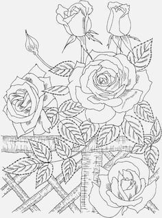 Adult Coloring Pages Free To Print Nature Beauty Coloring