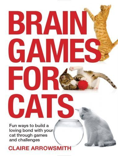 Review: Brain Games for Cats - The Conscious Cat