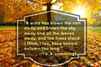 Wonderful 14 Fabulous Fall Quotes: Wonderful Words For Autumn!
