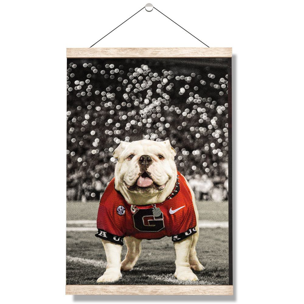 Georgia Bulldogs Uga Under The Lights Hanging Canvas Uga X Etsy In 2020 Hanging Canvas College Wall Art Canvas Wall Art