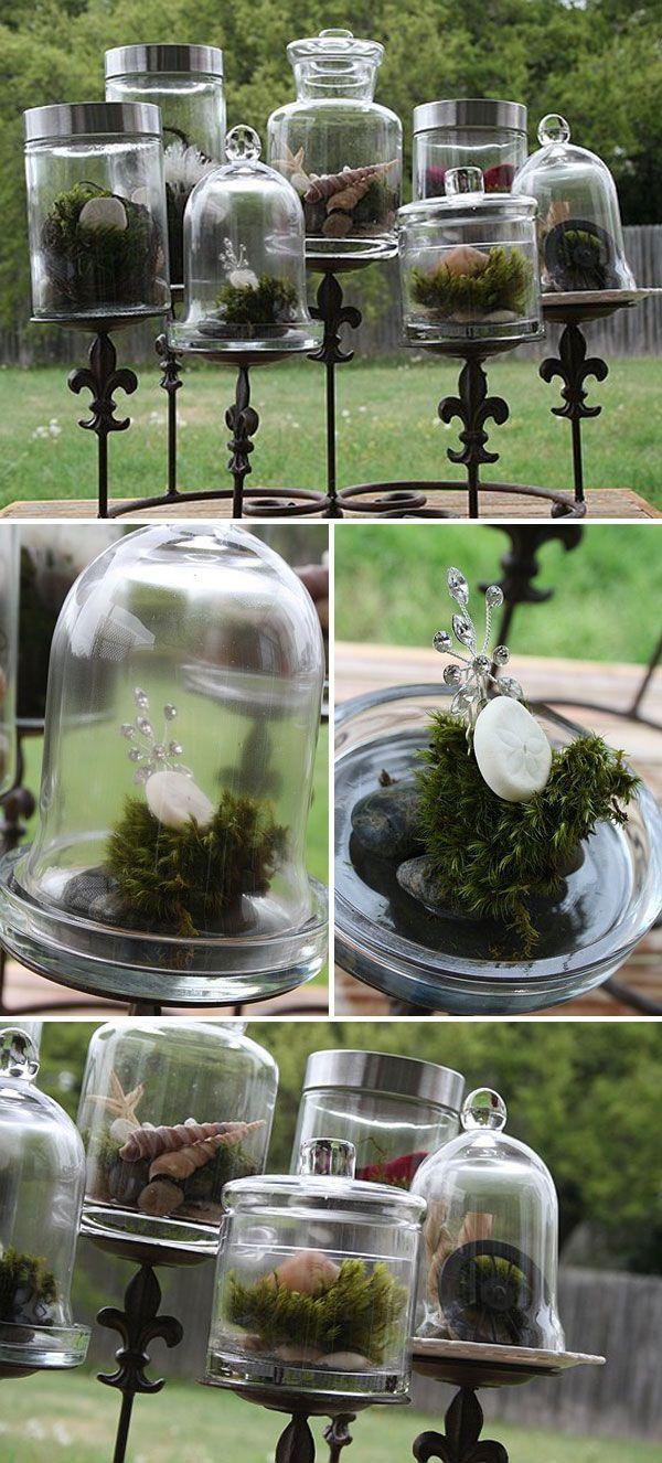 Moss Terrariums Tutorial How To Make Care Garden Diy