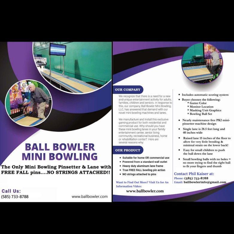 Ball Bowler Mini Bowling Pinsetters Lanes Mini Bowling Bowling Mini