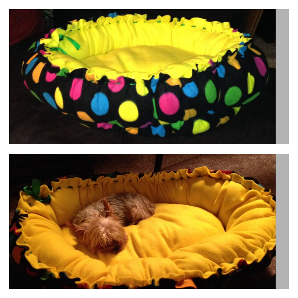 Nosew Doggie Bed Dog bed, Dachshund dog, Bean bag chair