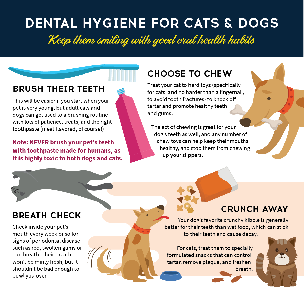 Did you know that February is National Pet Dental Health