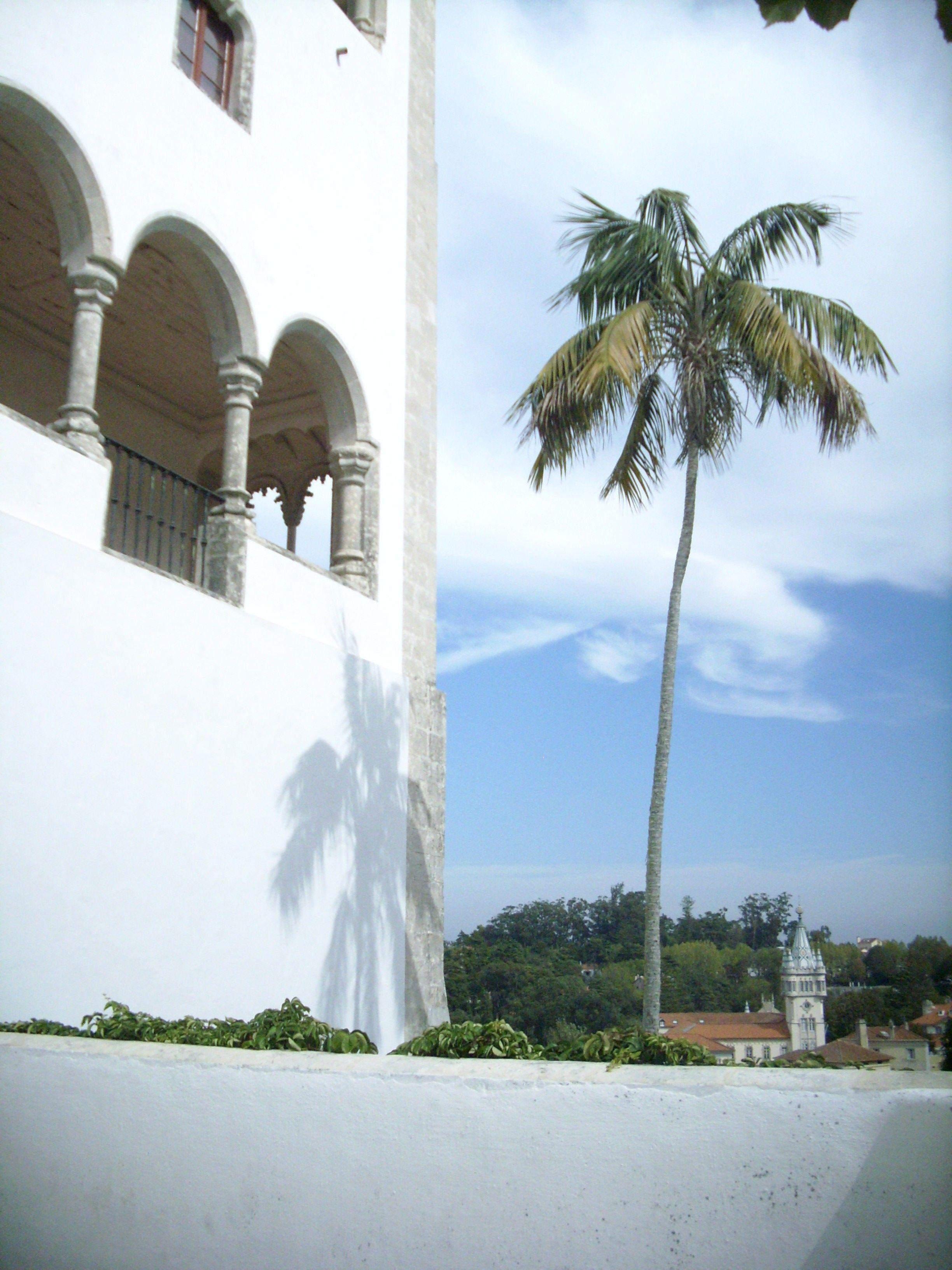 Sintra palacio real