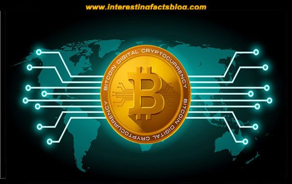 Know more information about how bitcoin works what is bitcoin know more information about how bitcoin works what is bitcoin mining how to get bitcoins digital currency how to use bitcoin at interestingfact ccuart Choice Image