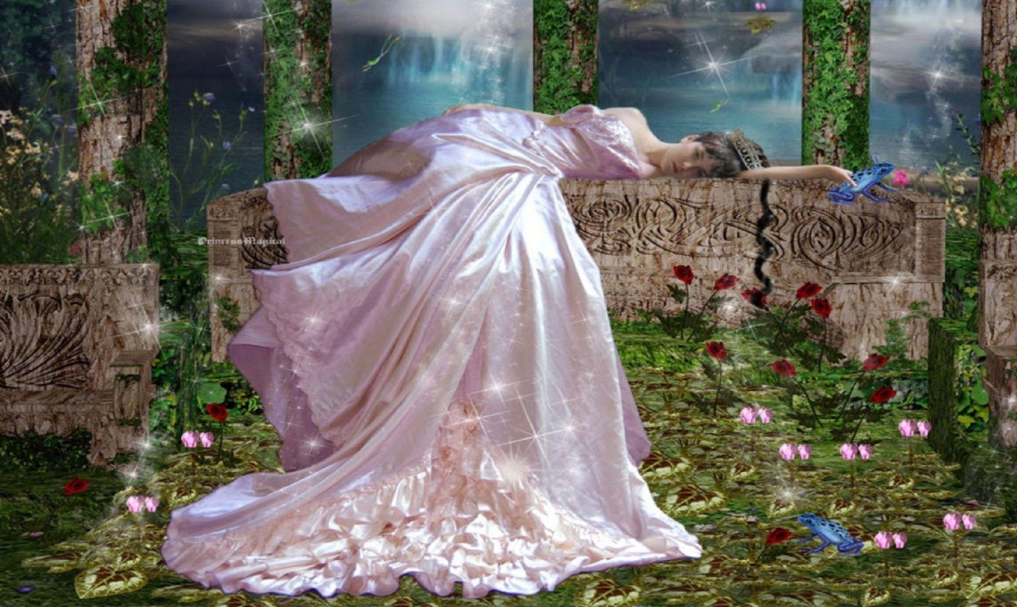 sleeping beauty hd wallpaper