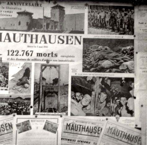 Mauthausen, Austria, Newspaper cuttings, Postwar