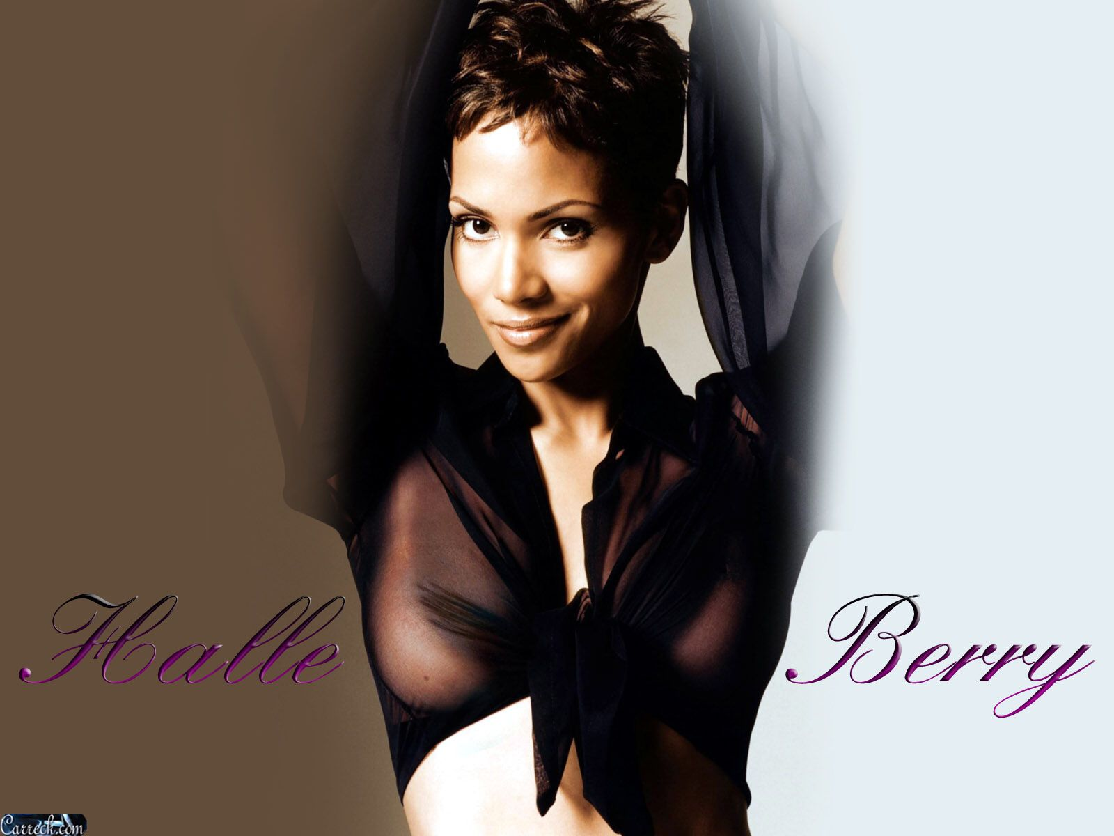 Halle Berry Images Halle Berry Hd Wallpaper And Background Photos 24116071 Halle Berry Images Halle Berry Halle