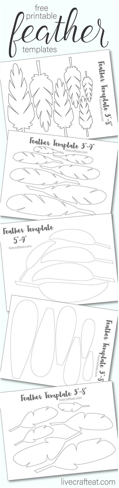 picture about Free Printable Turkey Feather Template titled Printable Turkey Feather Styles Templates - Totally free