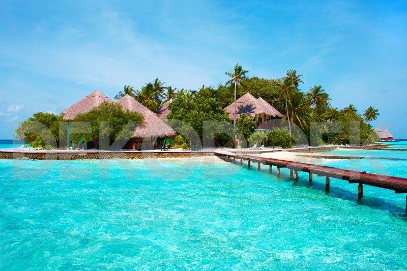 tropische eilanden - Google zoeken