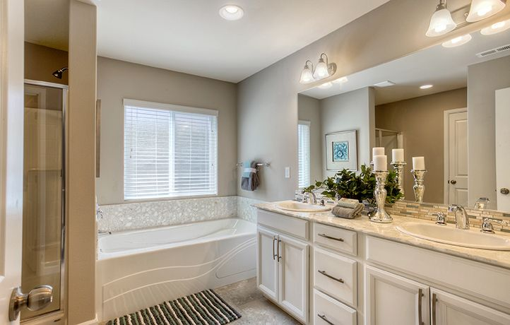 Hickory New Home Plan in Campus Reserve by Lennar