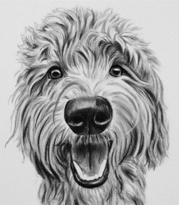 Custom Pet Portrait Charcoal Pet Drawing Pet Sketch