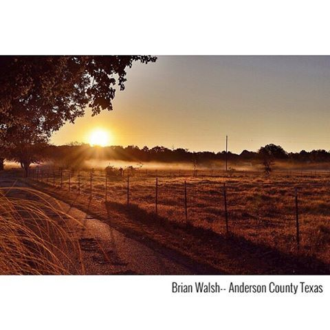 There's no better way to start the day than this - beautiful East Texas in all her glory... Thank you to our new friend Brian Walsh (brianwalsh46) for snapping and sharing this beautiful sunrise just outside Palestine, Texas.