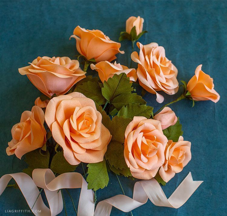 Video Tutorial: New Crepe Paper Rose Flower Kit #crepepaperroses Video Tutorial: New Crepe Paper Rose Flower Kit #crepepaperroses Video Tutorial: New Crepe Paper Rose Flower Kit #crepepaperroses Video Tutorial: New Crepe Paper Rose Flower Kit #crepepaperroses Video Tutorial: New Crepe Paper Rose Flower Kit #crepepaperroses Video Tutorial: New Crepe Paper Rose Flower Kit #crepepaperroses Video Tutorial: New Crepe Paper Rose Flower Kit #crepepaperroses Video Tutorial: New Crepe Paper Rose Flower K #crepepaperroses