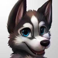 Husky Art Furry Drawing Cute Animal Drawings Anthro Furry