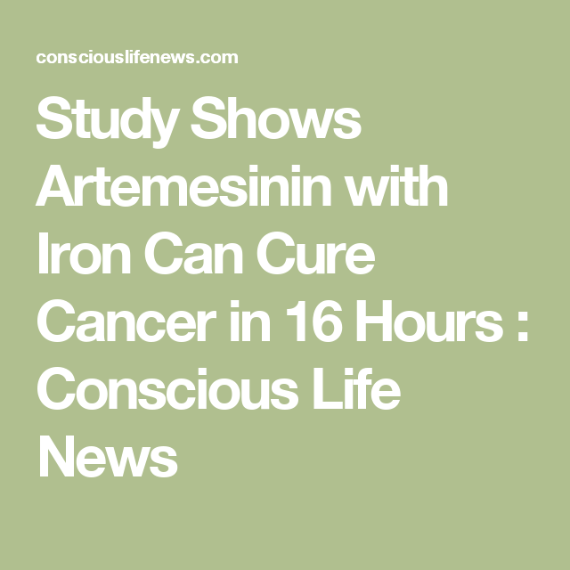 Study Shows Artemesinin with Iron Can Cure Breast Cancer in 16 Hours  : Conscious Life News