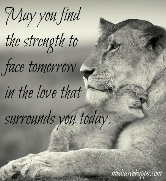 Love And Strength Quotes Cool 3 Httpsplayervimeovideo113793930Autoplay1 Your Blessing