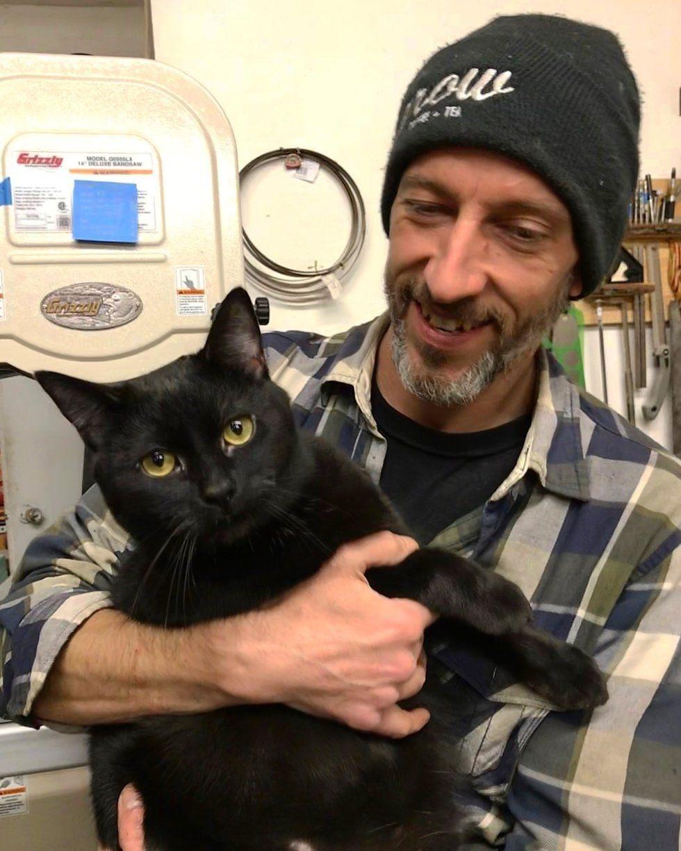 Pin By Suzy Mccowen On Black Cats Kitten Meowing Kitten Man