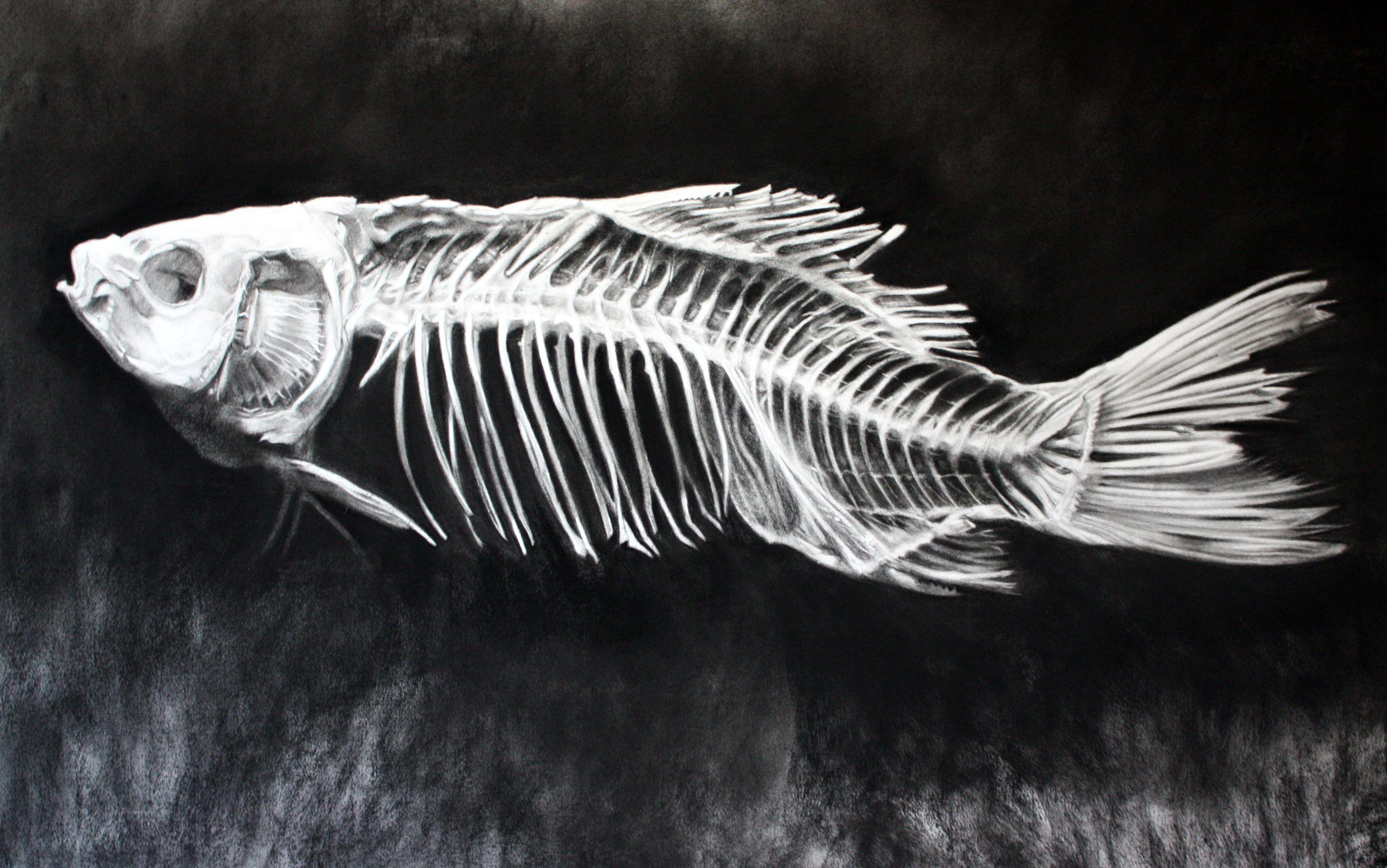 Картинки рыбья кость