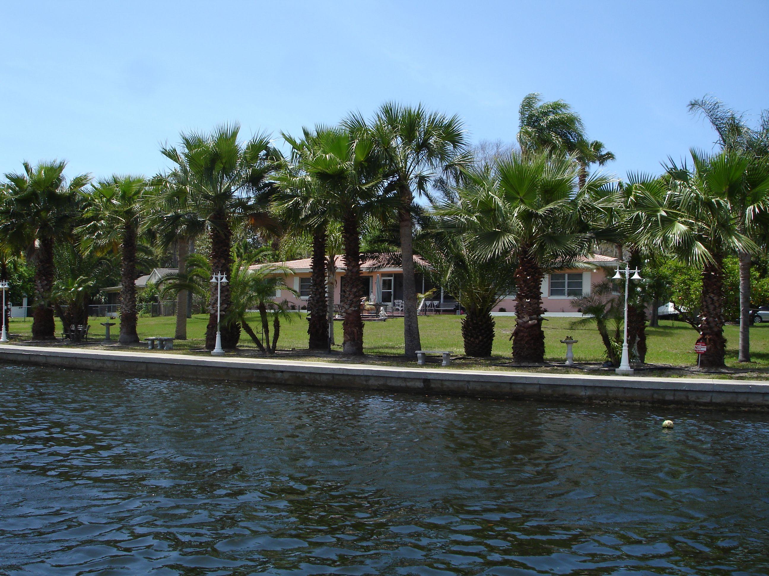 New Port Richey Fl Florida Pinterest