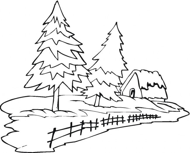 Two Pine Trees And House Tree Coloring Page Tree Outline Coloring Pages