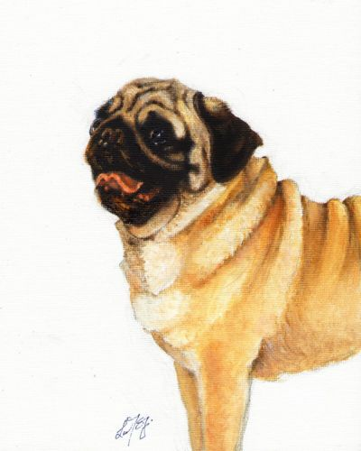 Original Oil Art Pug Portrait Painting Dog Artist Signed Artwork