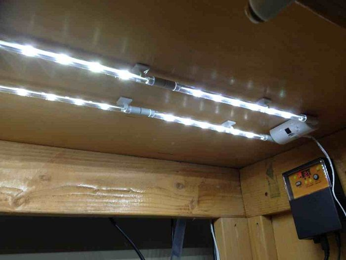 Modular Led Strip Lights Under Cabinets Http Lanewstalk Beauty With The Cabinet Lighting