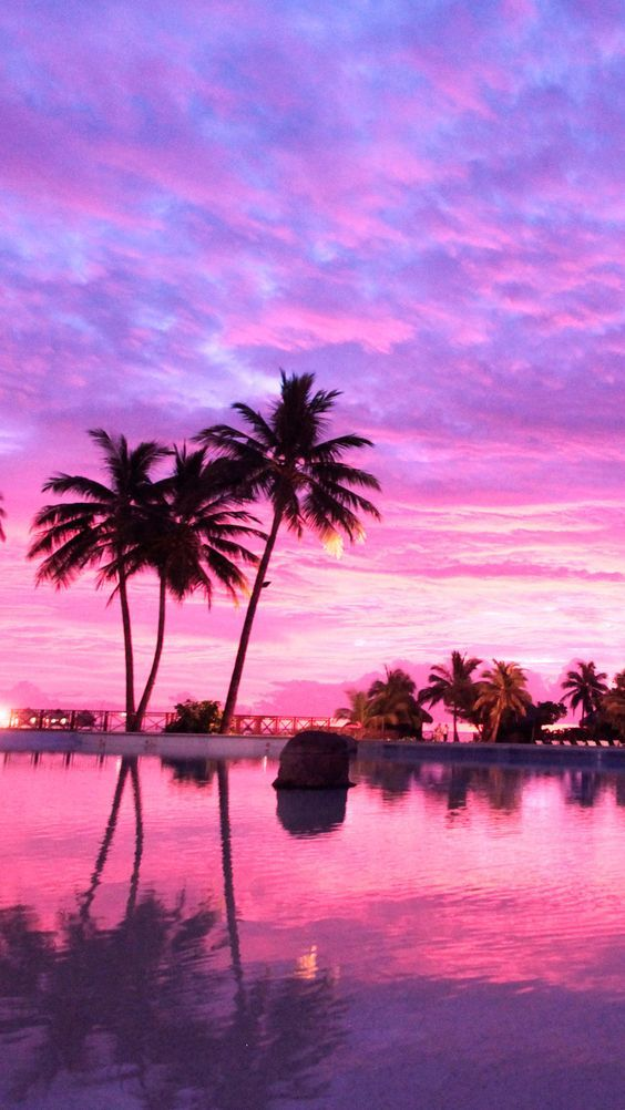 Purple Aesthetic Purple Pink Inspiration Neon Colors Neon Cities City Light Sunset Iphone Wallpaper Landscape Wallpaper Beach Wallpaper Iphone