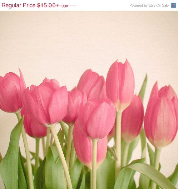 Sale 25 Off Pink Tulips Art Nature Photography Pink Tulip Spring Flower Decor In Green And Pink Colorful Tulpen Blumen Fruhlingsblumen Fotografie Blumen