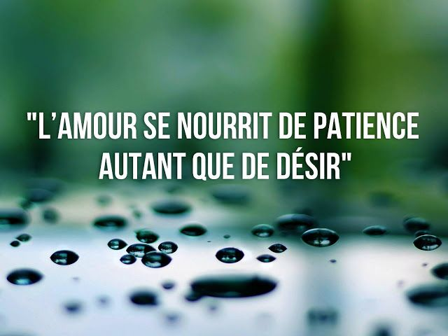 Citation Patience Patience Citation Amour Patience Et