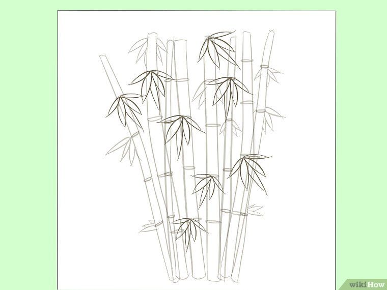 How To Draw Bamboo 8 Steps With Pictures Bamboo Drawing Painting Flowers Tutorial Bamboo Artwork