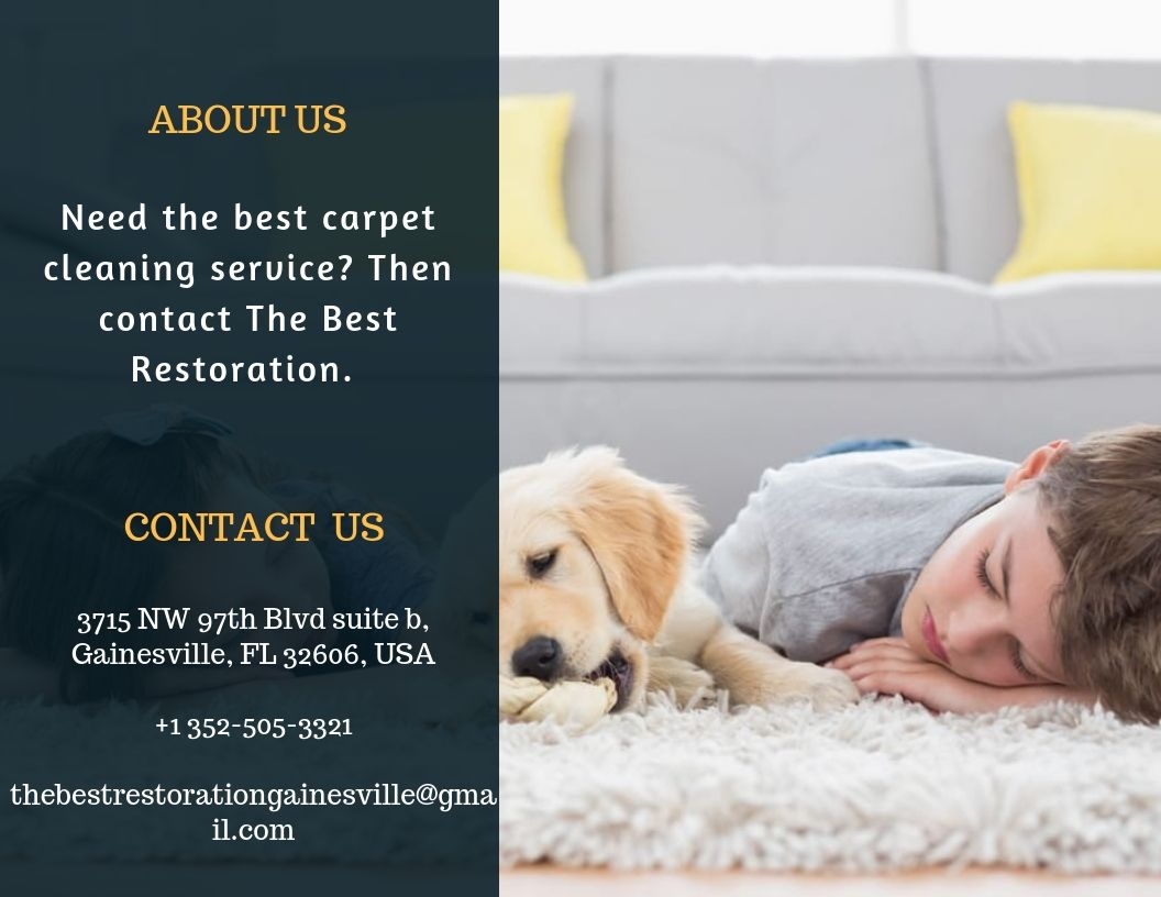 Contact us for the best carpet cleaning service in Tampa, Florida. The best restoration is here at your service.