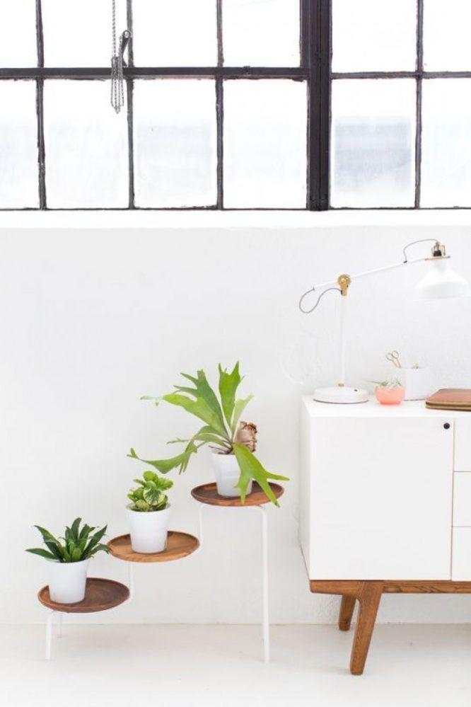 pour mettre vos plantes dintrieur en valeur support plantes8